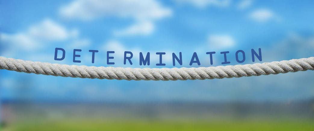 Determination Blog